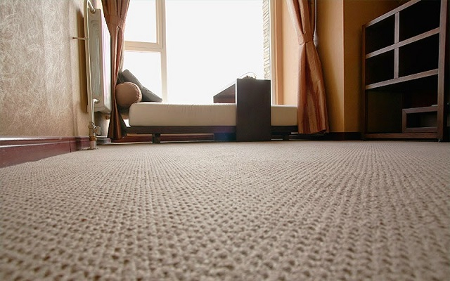5 Tips To Protect Your Carpets From Damage